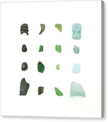 My Favorite Sea Glass Canvas Print by Jennifer Booher