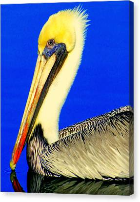 My Friend Pelli Canvas Print