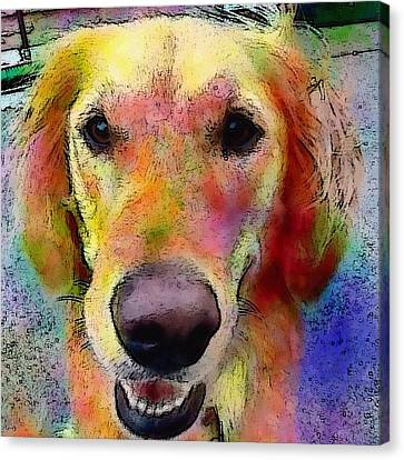 Portraits Canvas Print - My Friends Dog #portrait #dogportrait by Robin Mead
