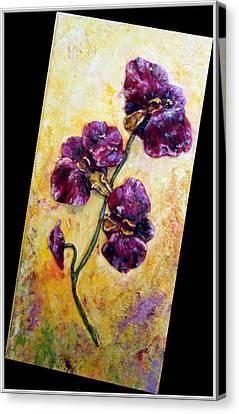 My Little Violet Orchids  Canvas Print