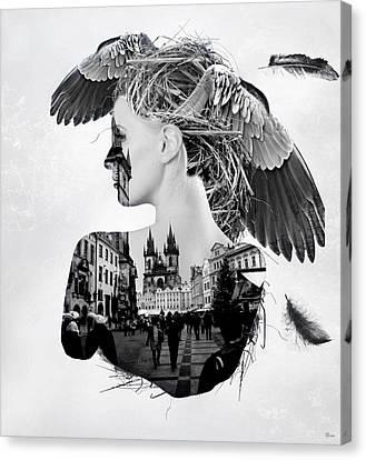 My Nest Canvas Print by Bojan Jevtic