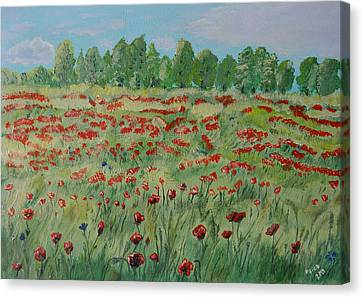 My Poppies Field Canvas Print by Felicia Tica