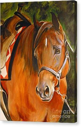 My Quarter Horse Canvas Print
