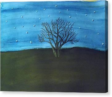 My Starry Sky Canvas Print