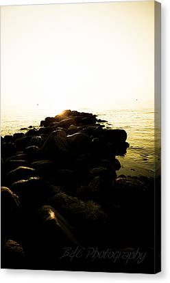 My Stepping Stones 2 Canvas Print by BandC  Photography