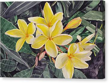 Canvas Print featuring the painting My Trubute To Marita by Debi Singer