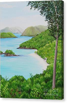 My Trunk Bay Canvas Print