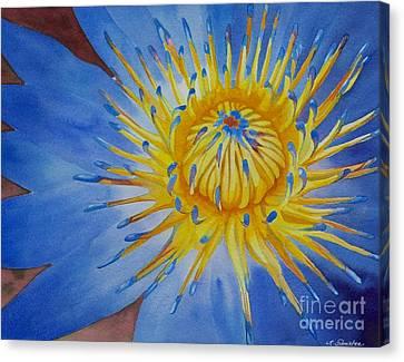 Myanamar Lily Canvas Print
