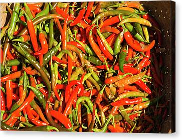 Myanmar Mt Popa Red And Green Chilies Canvas Print