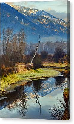 Myrtle Creek Reflections Canvas Print by Annie Pflueger