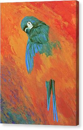 Canvas Print featuring the painting Mysterious Macaw by Margaret Saheed