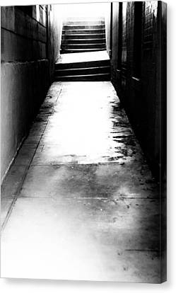 Mysterious Walkway Canvas Print by Shelby  Young