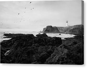 Mysterious Yaquina Head Canvas Print by Mark Kiver