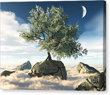 Mystery Tree Canvas Print by Eric Nagel
