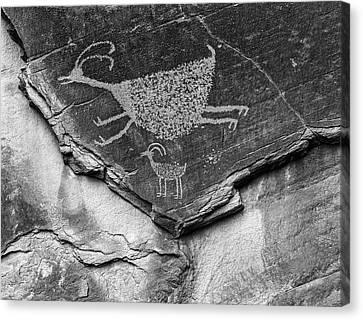 Mystery Valley Petroglyph Monument Canvas Print