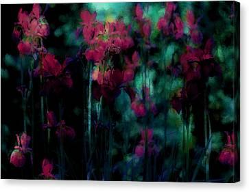 Masterful Canvas Print - Mystic Dreamery by The Art Of Marilyn Ridoutt-Greene