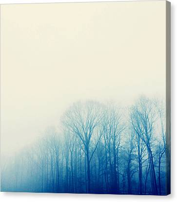 Mystic Canvas Print by Kim Fearheiley