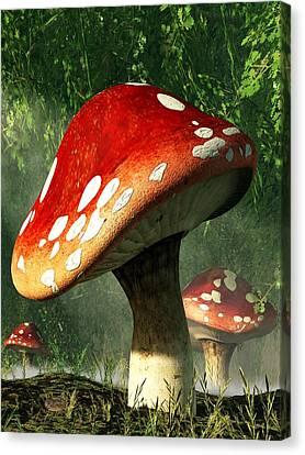 Forest Floor Canvas Print - Mystic Mushroom by Daniel Eskridge