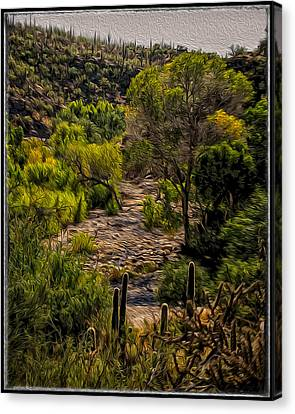 Mystic Wandering Canvas Print by Mark Myhaver