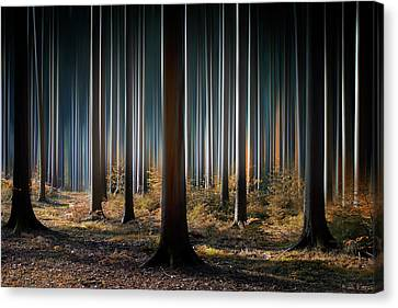 Mystic Wood Canvas Print by Carsten Meyerdierks