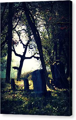 Canvas Print featuring the photograph Mystical Fantasies by Melanie Lankford Photography