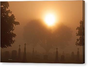 Mystical Fog Canvas Print