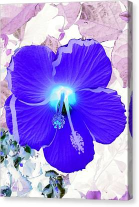 Mystical Garden - Photopower 01 Canvas Print