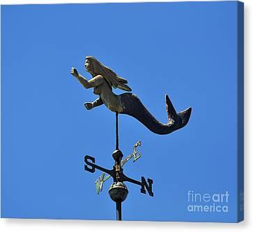 Mystical Mermaid Canvas Print by Al Powell Photography USA