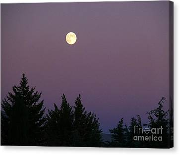 Mystical Moon Canvas Print by Jacquelyn Roberts