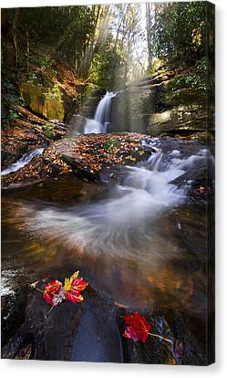 Mystical Pool Canvas Print by Debra and Dave Vanderlaan