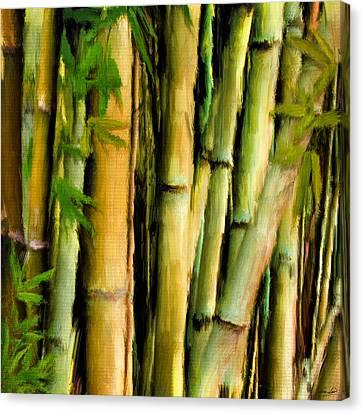 Mystique Beauty- Bamboo Artwork Canvas Print by Lourry Legarde