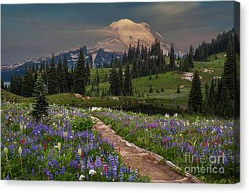 Naches Loop Bursting With Flowers Canvas Print by Mike Reid