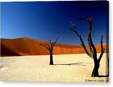 Namibia Canvas Print