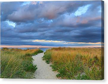 Nantucket Beach Path Canvas Print by Katherine Gendreau