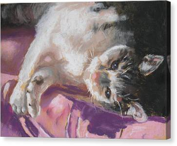 Nap Time For Kitty Canvas Print by Janice Harris