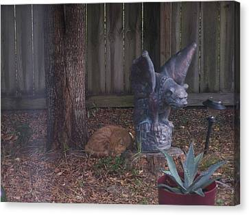 Canvas Print featuring the photograph Nap Time by Michele Kaiser