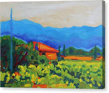 Napa Art Napa Vineyard With House And Hills Oil Painting Bertram Poole Canvas Print