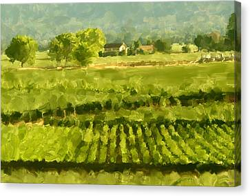 Napa Detail Canvas Print by Paul Tagliamonte