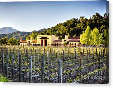 Napa Valley Spring Sunset Canvas Print by George Oze