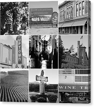 Napa Valley Wine Country 20140905 Black And White Canvas Print by Wingsdomain Art and Photography