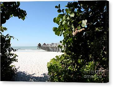 Naples Pier View Canvas Print by Christiane Schulze Art And Photography