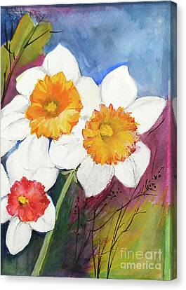Narcissus Canvas Print by Sibby S