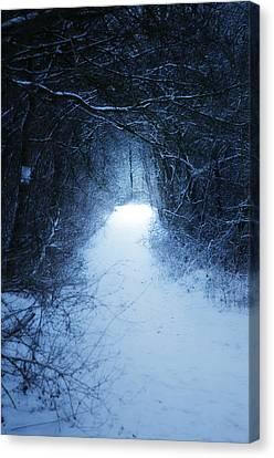 Narnia Canvas Print by Studio Yuki