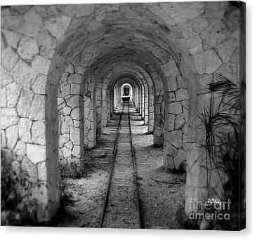 Arched Narrow Gauge Canvas Print by Patrick Witz
