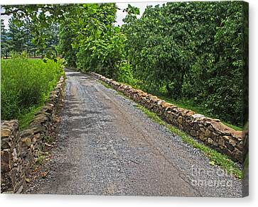 Narrow Road Canvas Print