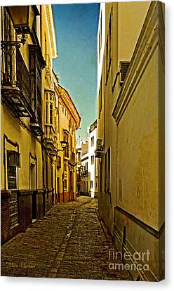 Narrow Street In Seville Canvas Print by Mary Machare