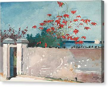 Nassau Bahamas Canvas Print by Winslow Homer