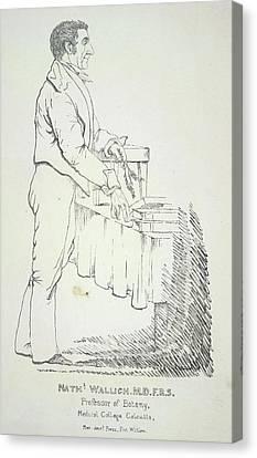 Nathaniel Wallich Canvas Print