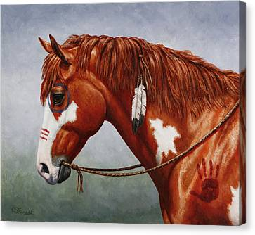Native American War Horse Canvas Print by Crista Forest