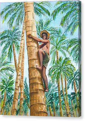 Canvas Print featuring the painting Native Climbing Palm Tree by Val Miller